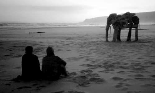 Driftwood Elephant, Nature's Valley Beach (January 2013) by Simon Max Bannister. Photo: Simon Max Bannister.