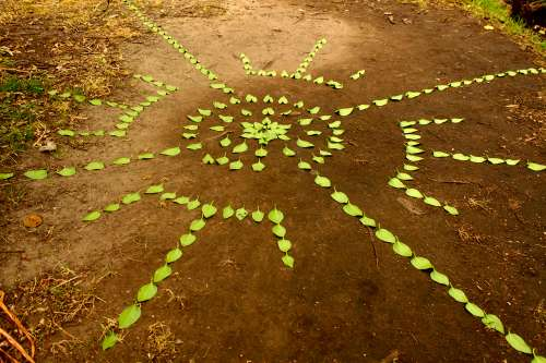 Christiaan Lochner, November 2014. Creating a pattern by using leaves on the soil. Pathway next to a stream on the Eastern boundary of the Noordhoek common, Noordhoek, Western Cape, South Africa. Photo: Janet Botes.
